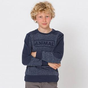 Pull Enfant ANIMAL Troop Bleu
